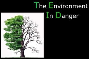 short essay about environmental problems