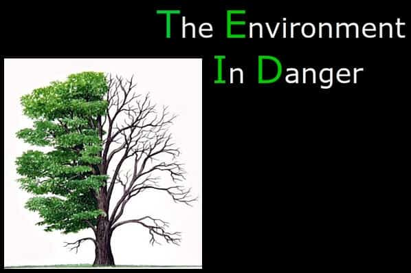 essays on the dangers to the environment Once a plant is introduced in an agricultural environment, it is reasonable to assume it will become part of a larger ecosystem, meaning the problem of environmental damage done by gmos is much.