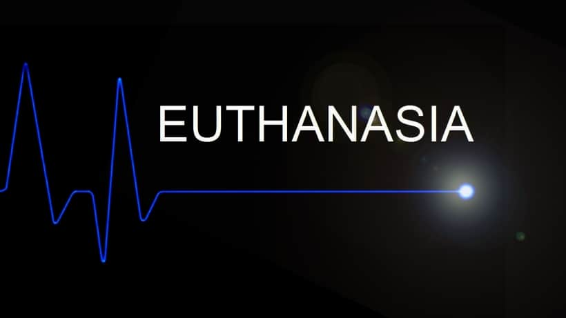 the controversy surrounding euthanasia essay Read this essay on euthanasia essay  the controversy behind euthanasia  euthanasia legislation surrounding both euthanasia and assisted suicide.
