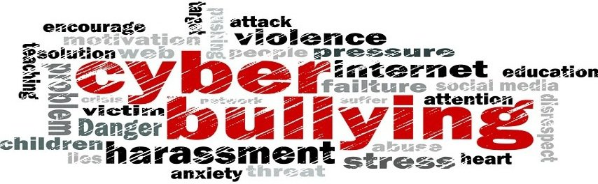 Cyberbullying Essay Effects  Prevention